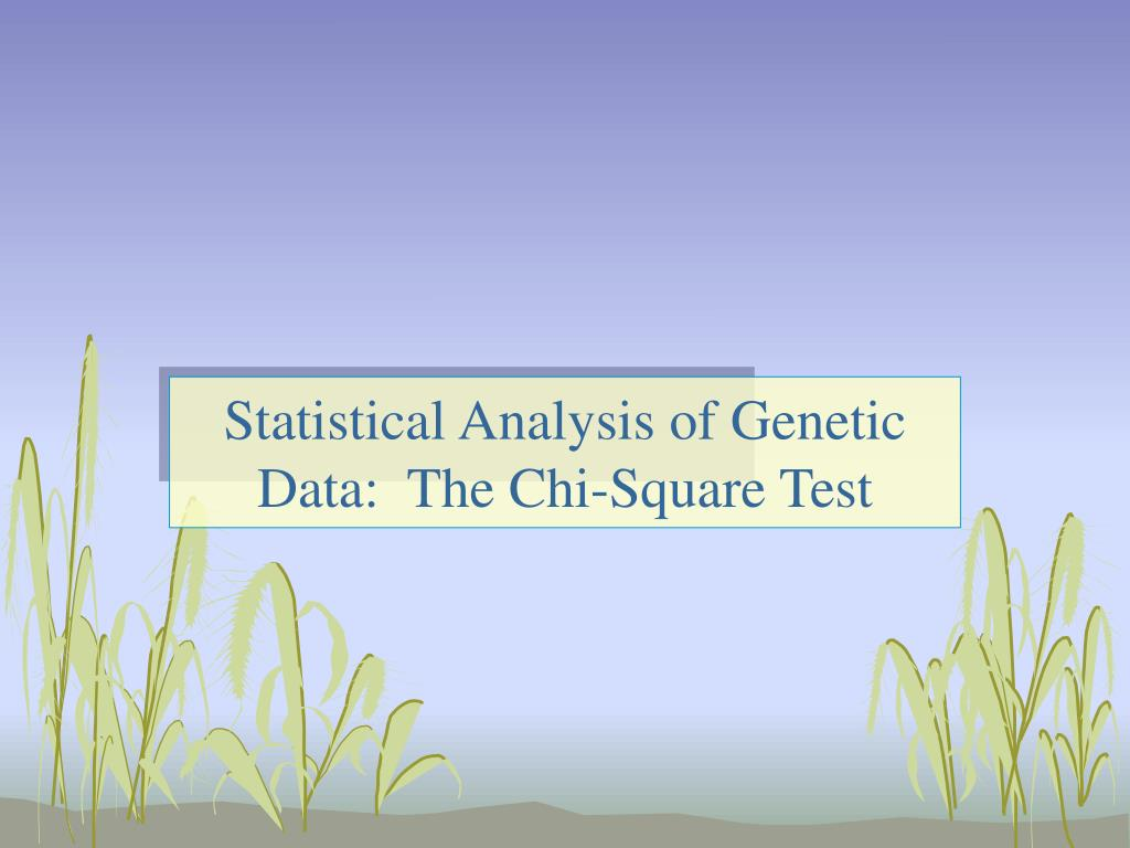 Statistical Analysis of Genetic Data:  The Chi-Square Test