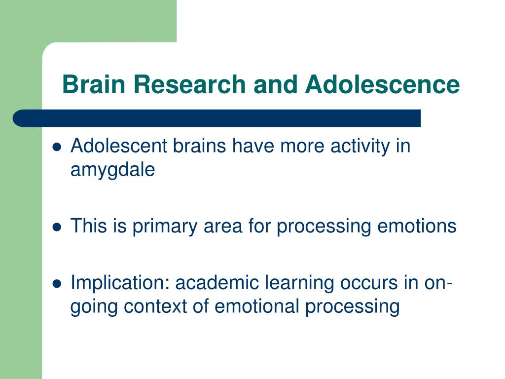 Brain Research and Adolescence