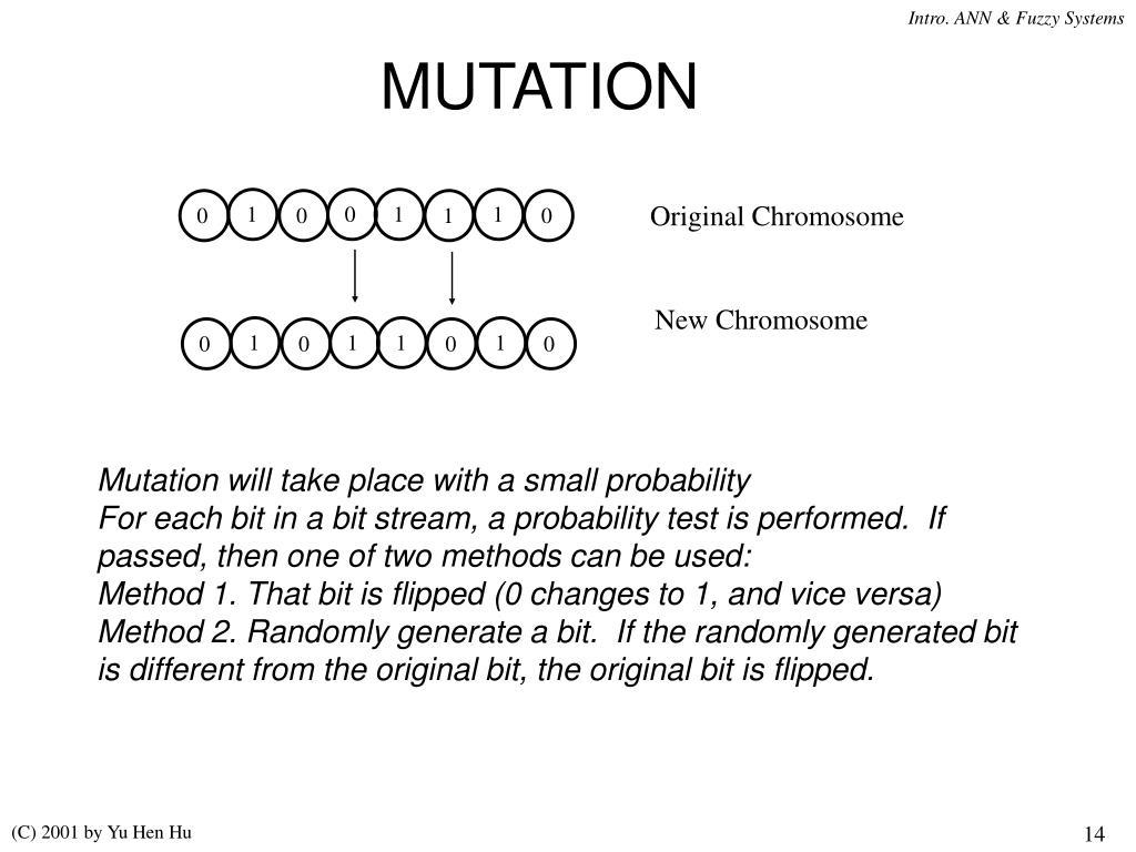 Original Chromosome