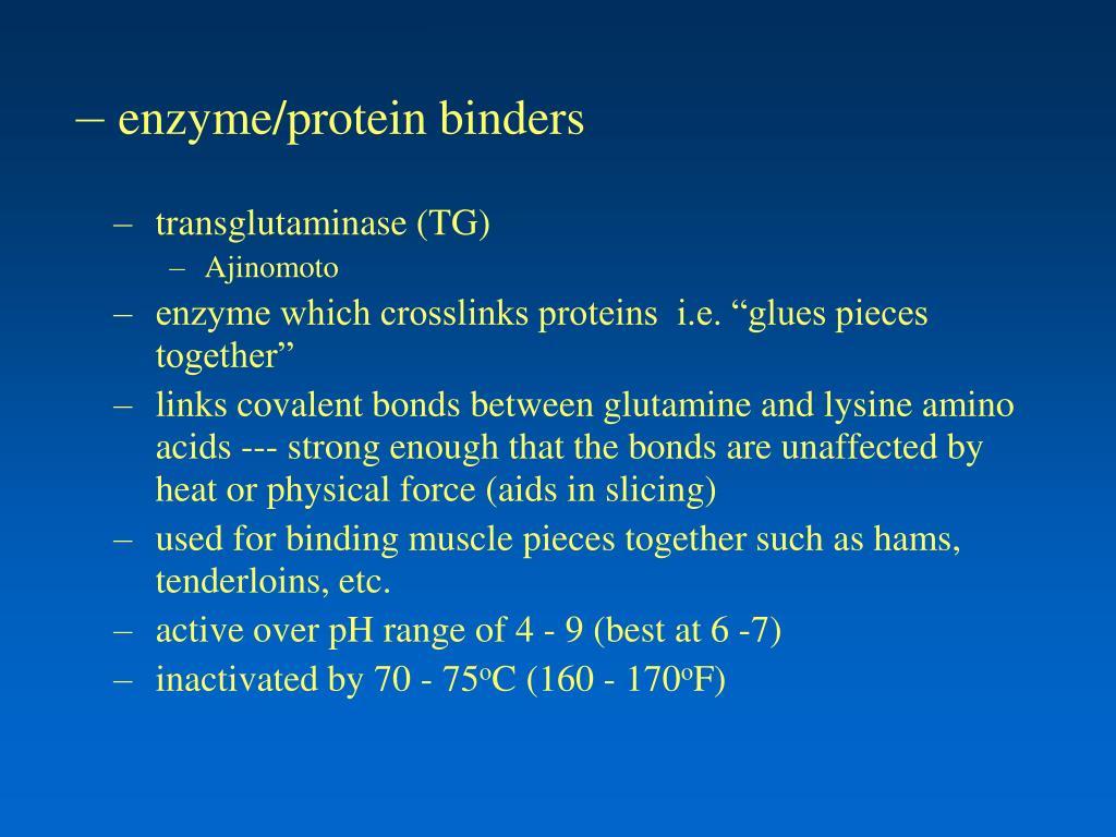 enzyme/protein binders
