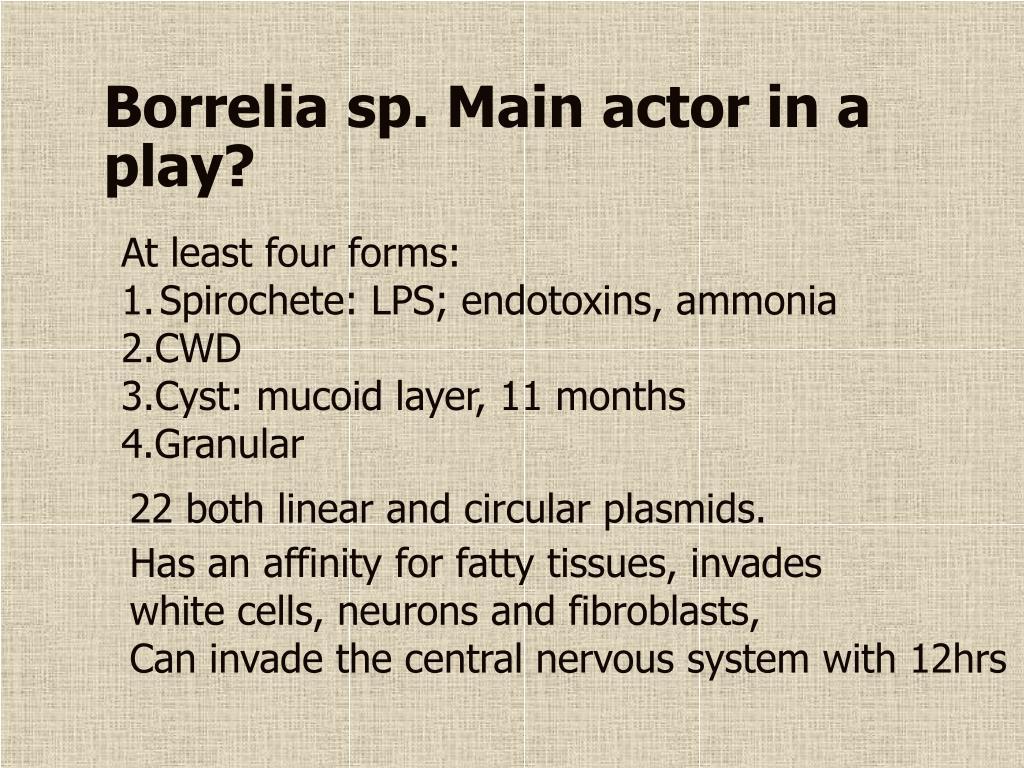 Borrelia sp. Main actor in a play?