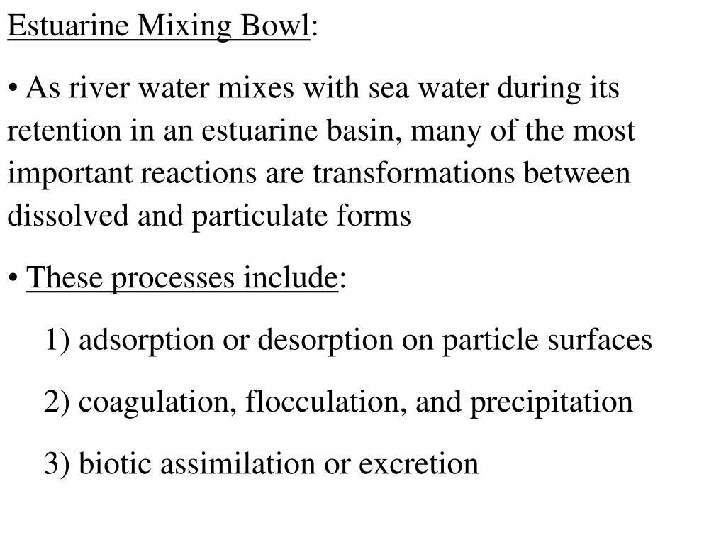 Estuarine Mixing Bowl