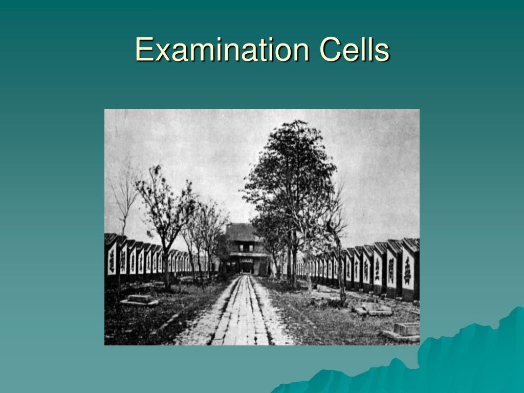Examination Cells