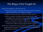 the reign of sui yangdi 3