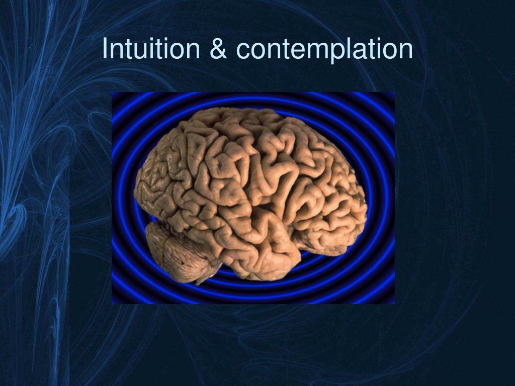 Intuition & contemplation
