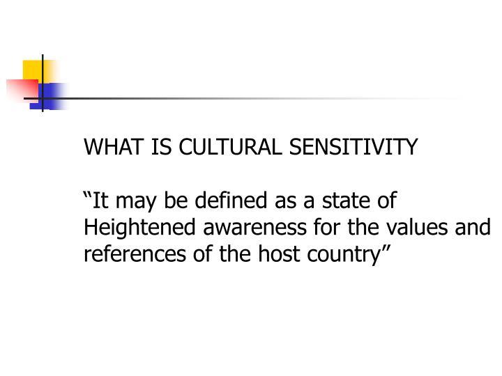 WHAT IS CULTURAL SENSITIVITY