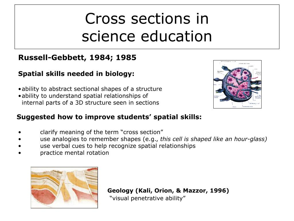 Geology (Kali, Orion, & Mazzor, 1996)