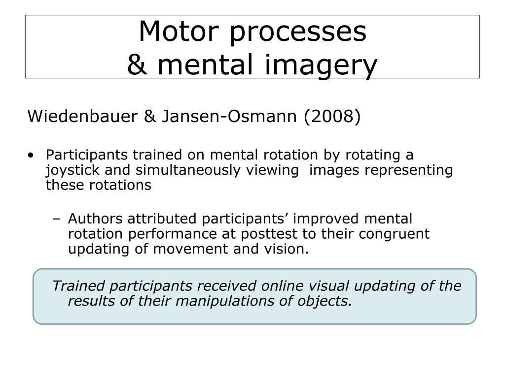 Motor processes