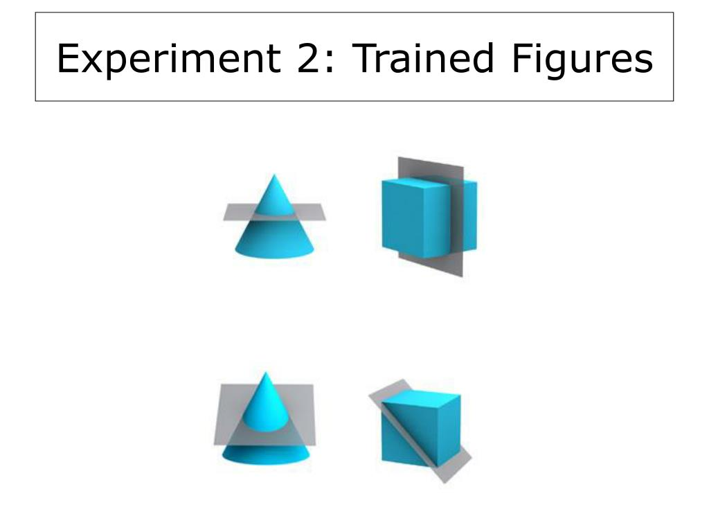 Experiment 2: Trained Figures