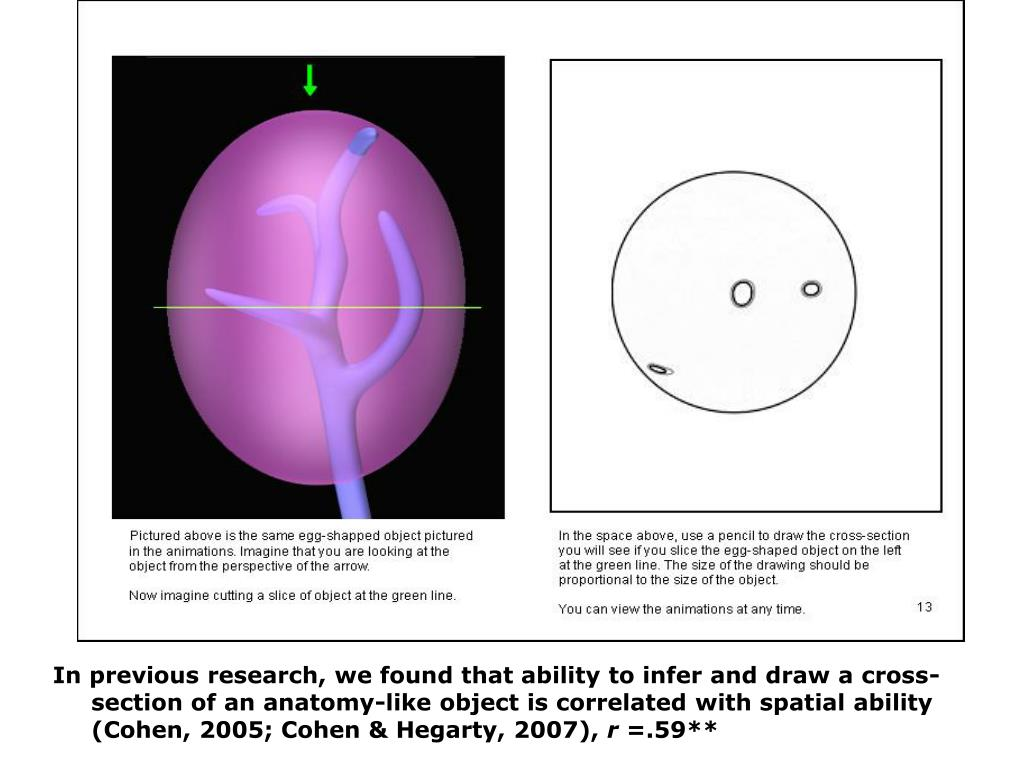 In previous research, we found that ability to infer and draw a cross-section of an anatomy-like object is correlated with spatial ability (Cohen, 2005; Cohen & Hegarty, 2007),