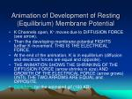 animation of development of resting equilibrium membrane potential