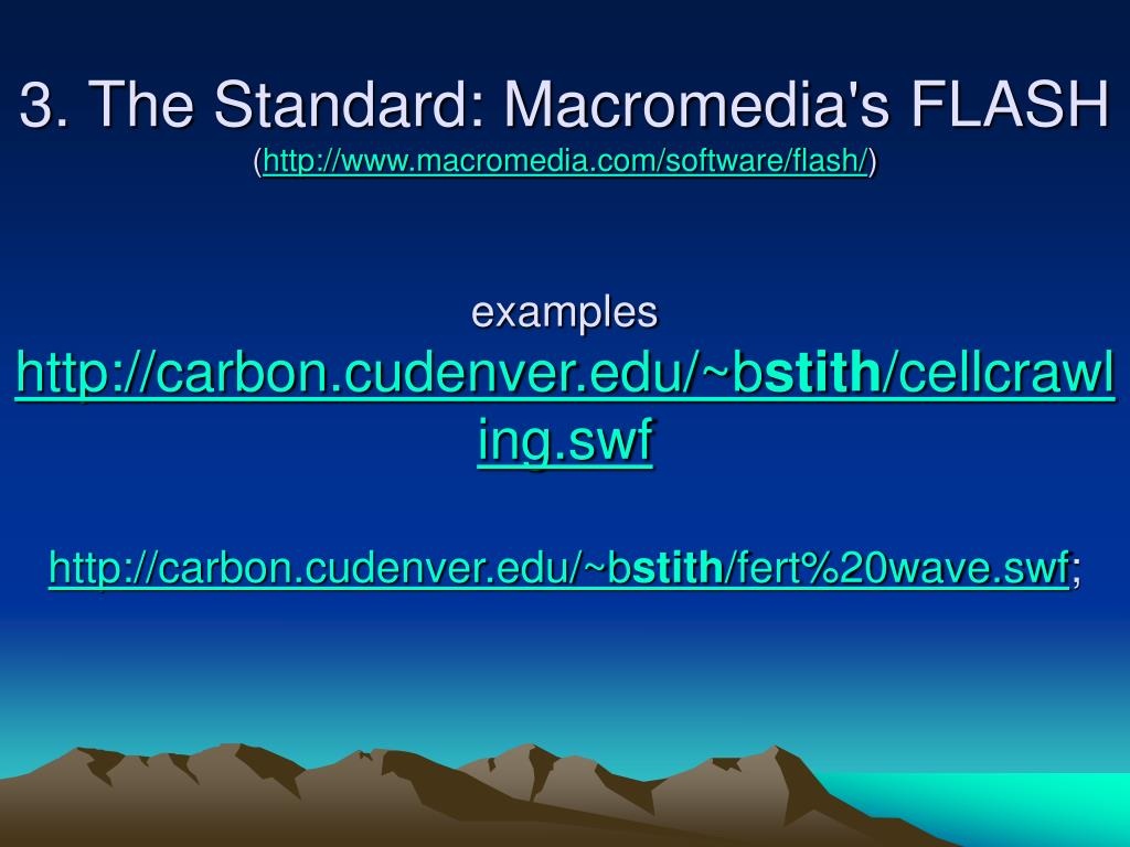 3. The Standard: Macromedia's FLASH