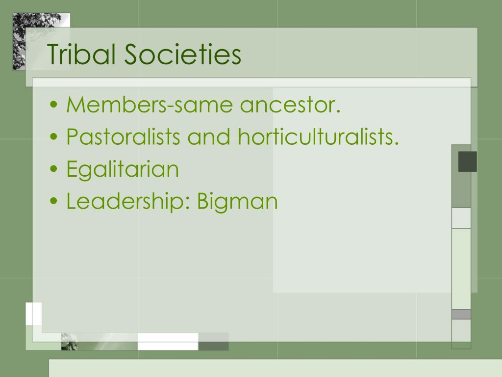 Tribal Societies