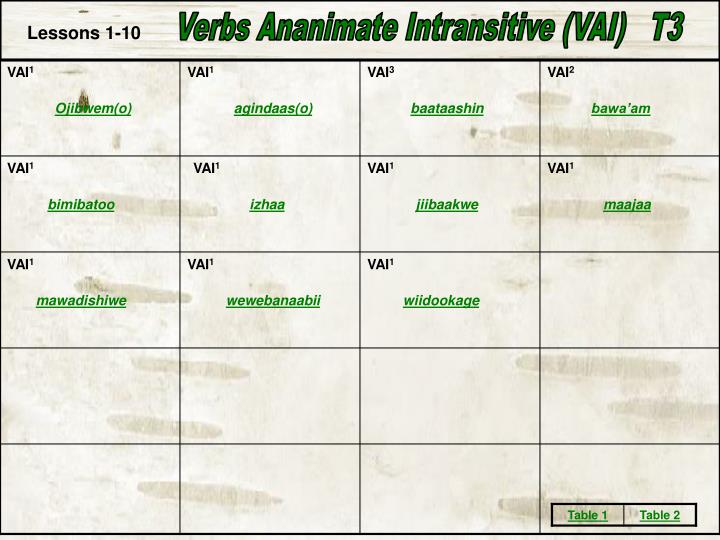 Verbs Ananimate Intransitive (VAI)   T3