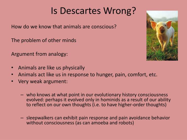 Is Descartes Wrong?