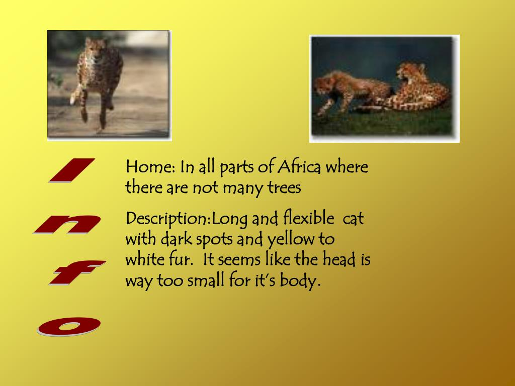 Home: In all parts of Africa where there are not many trees