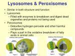 lysosomes peroxisomes