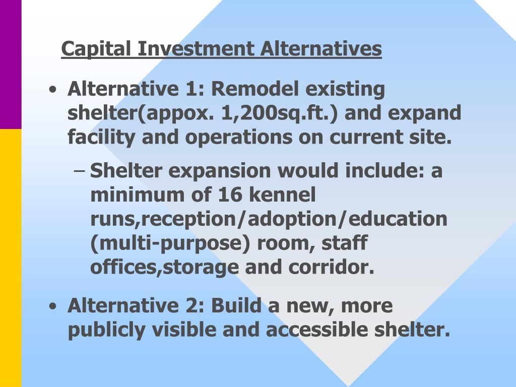 Capital Investment Alternatives