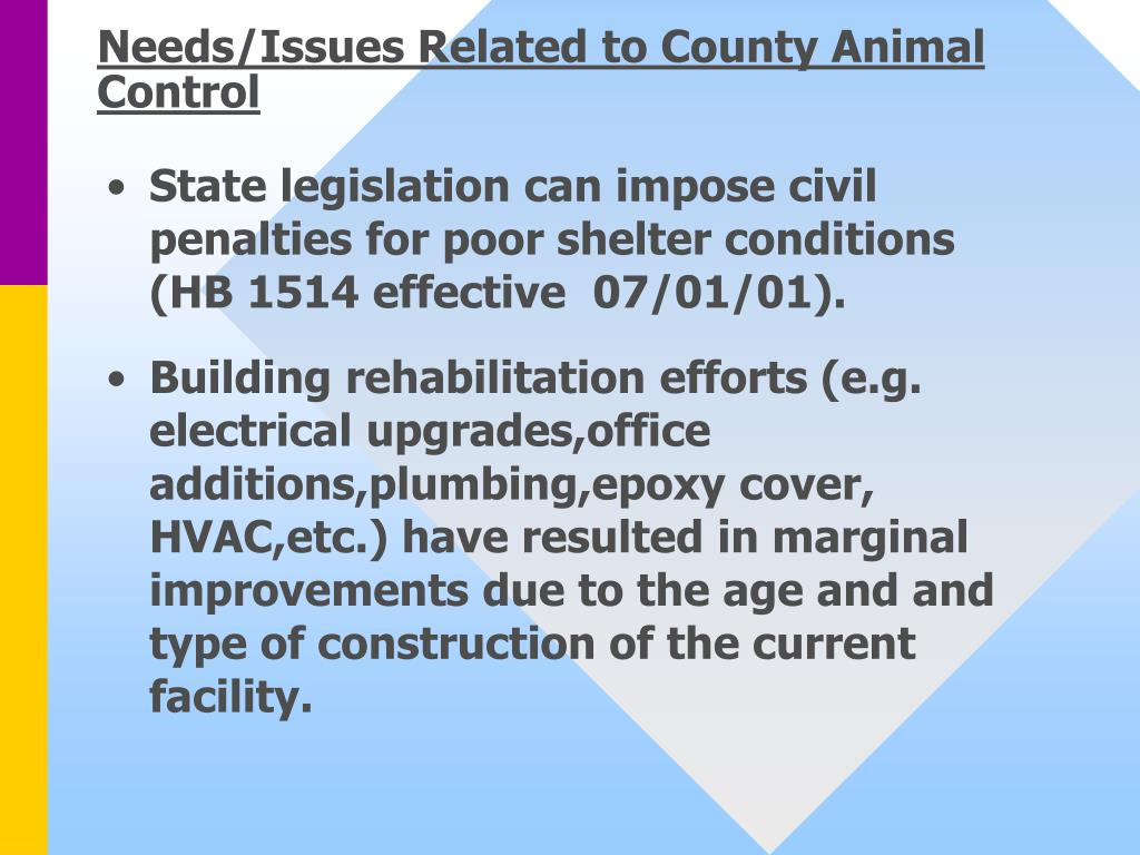 Needs/Issues Related to County Animal Control