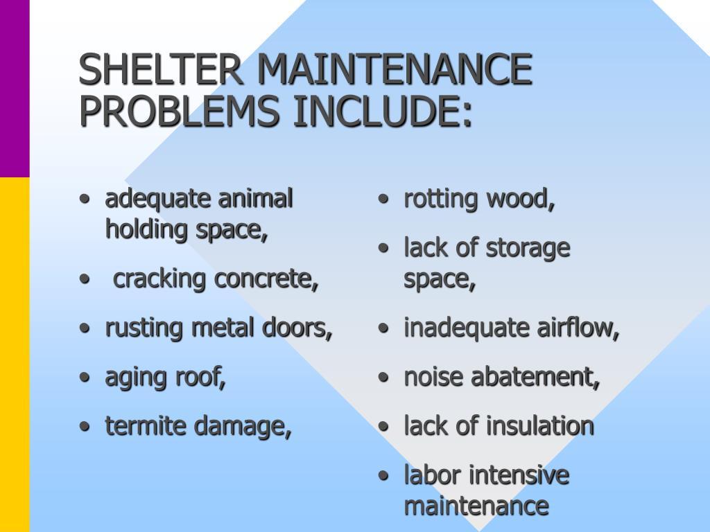 adequate animal holding space,
