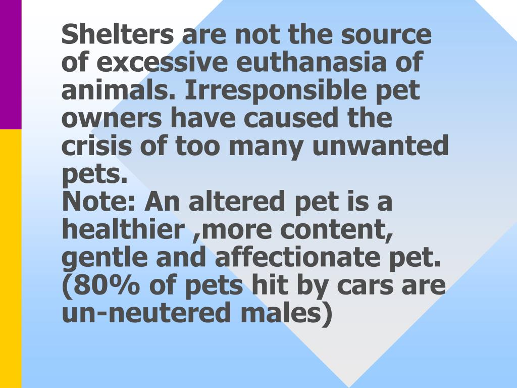 Shelters are not the source of excessive euthanasia of animals. Irresponsible pet owners have caused the crisis of too many unwanted pets.