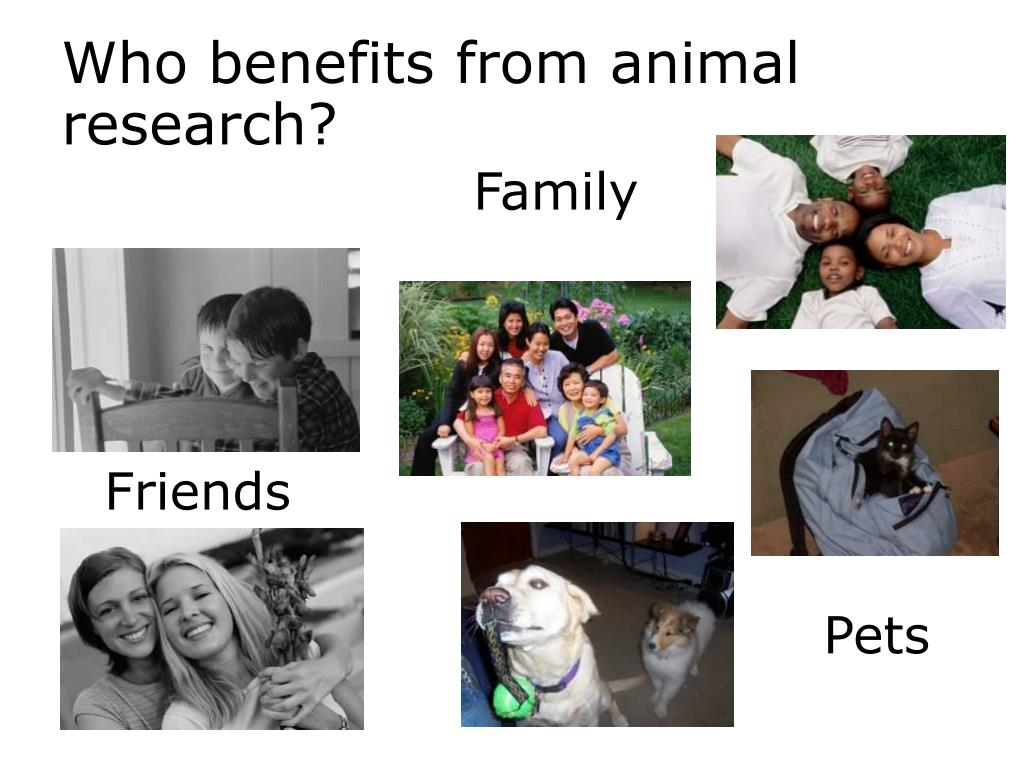 animal benefits The human-animal bond is a mutually beneficial and dynamic relationship  between people and animals that positively influences the health and well-being  of.