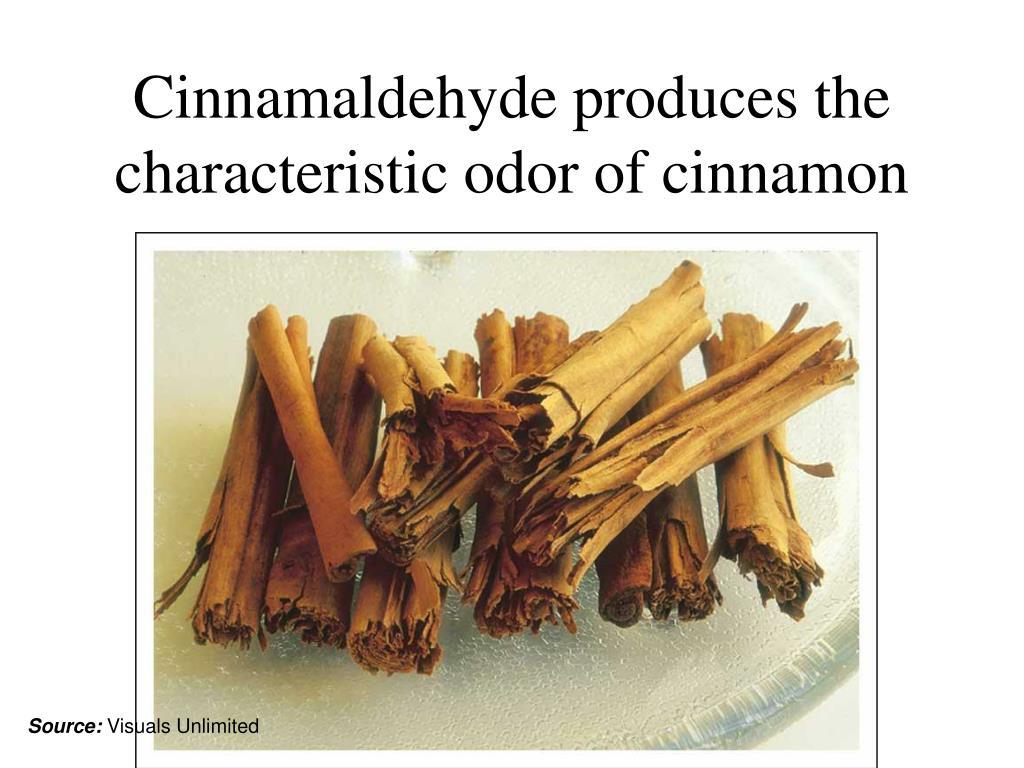 Cinnamaldehyde produces the