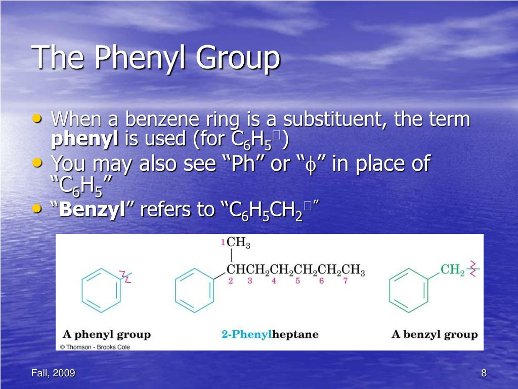 The Phenyl Group