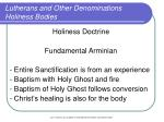 lutherans and other denominations holiness bodies8