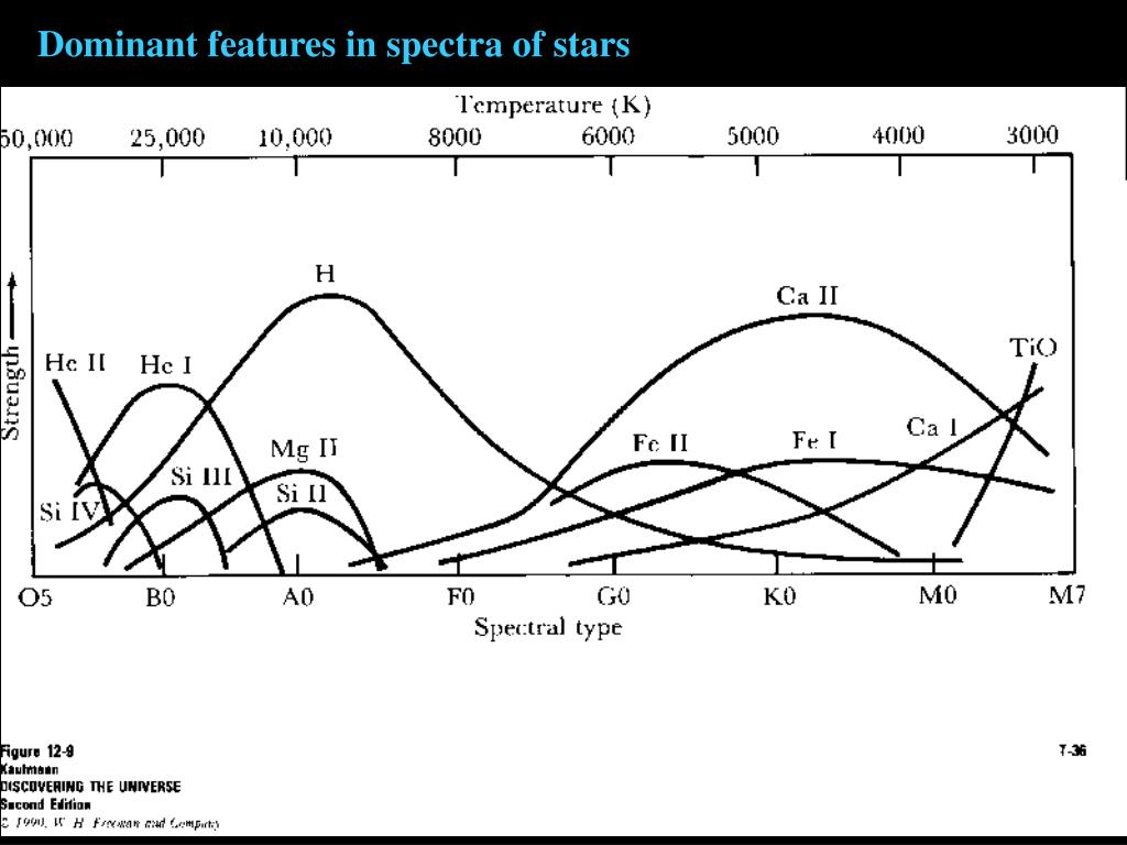Dominant features in spectra of stars