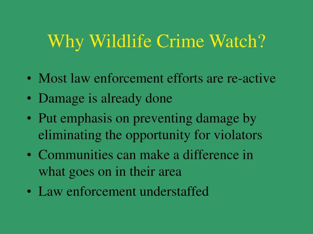Why Wildlife Crime Watch?