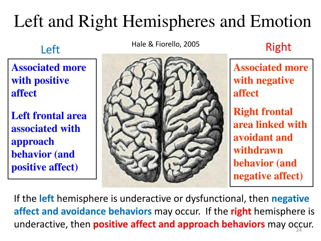 Left and Right Hemispheres and Emotion