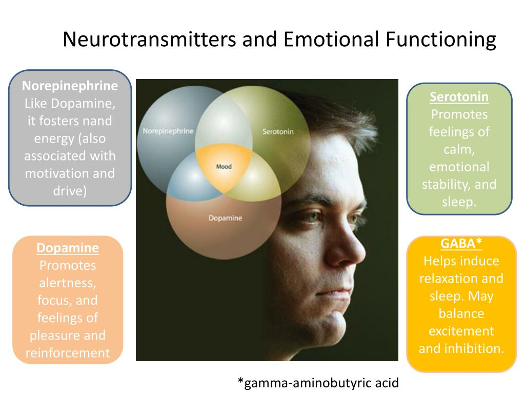 Neurotransmitters and Emotional Functioning