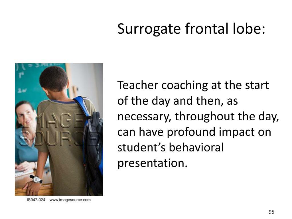 Surrogate frontal lobe: