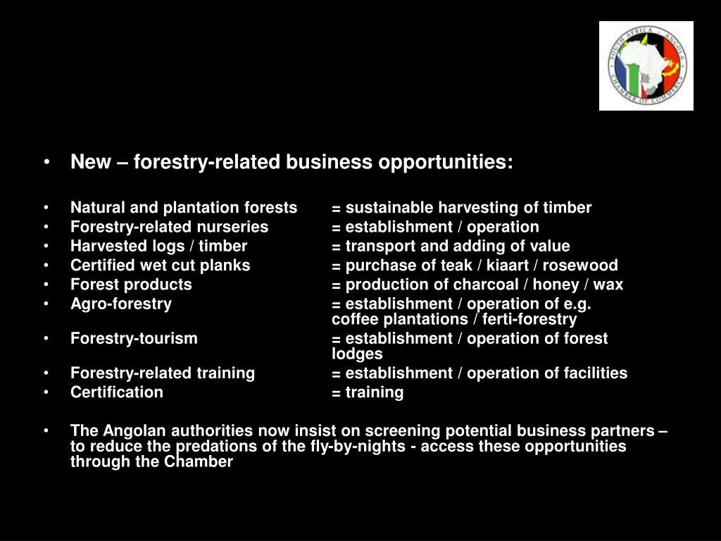 New – forestry-related business opportunities: