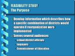 feasibility study the purpose