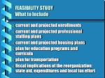 feasibility study what to include