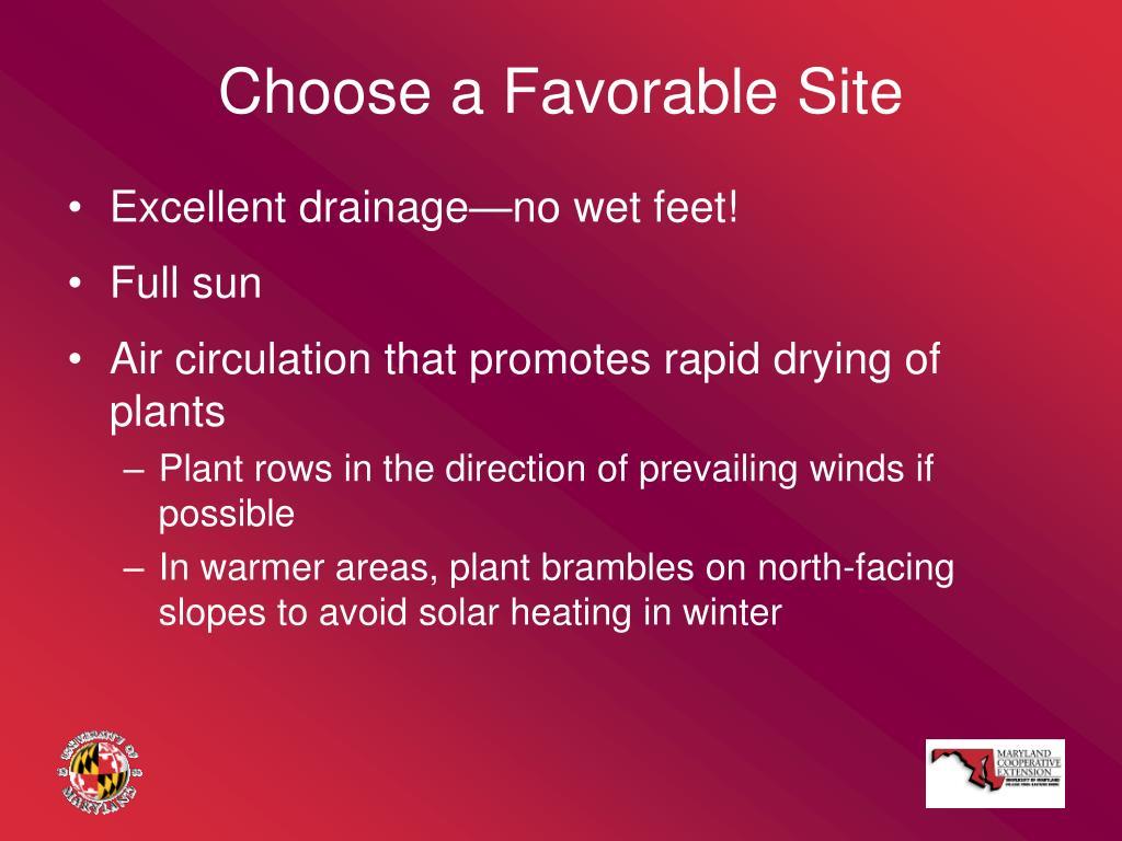 Choose a Favorable Site