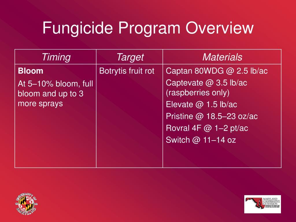 Fungicide Program Overview