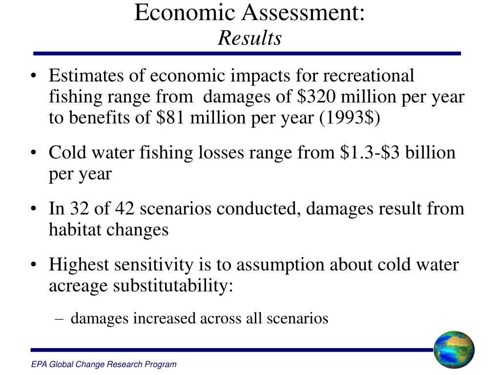 Economic Assessment: