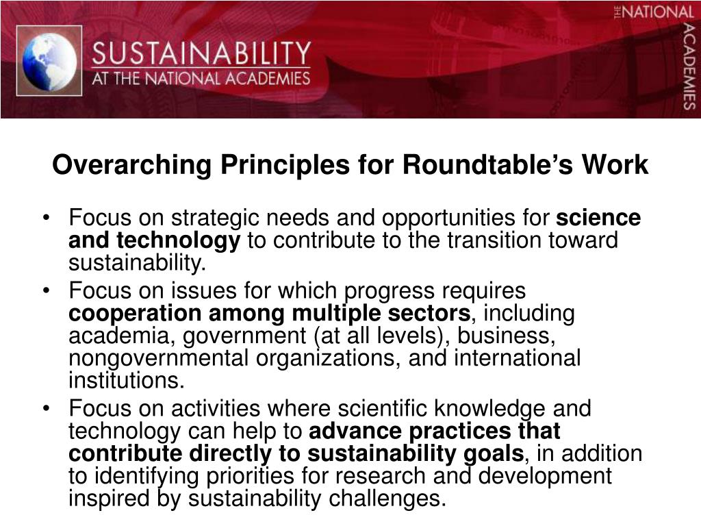 Overarching Principles for Roundtable's Work