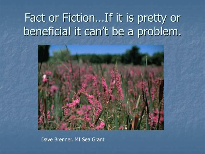 Fact or fiction if it is pretty or beneficial it can t be a problem