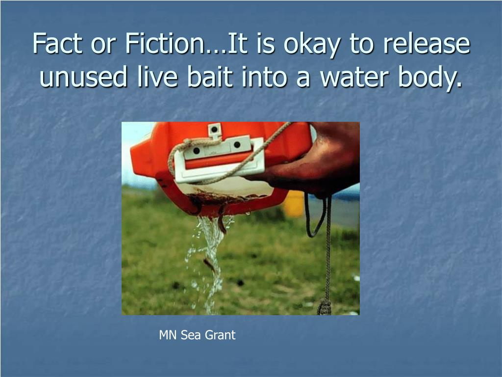 Fact or Fiction…It is okay to release unused live bait into a water body.