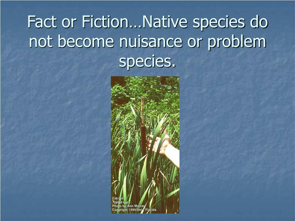 Fact or Fiction…Native species do not become nuisance or problem species.