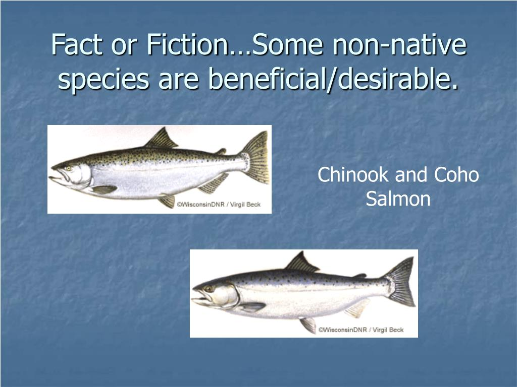 Fact or Fiction…Some non-native species are beneficial/desirable.