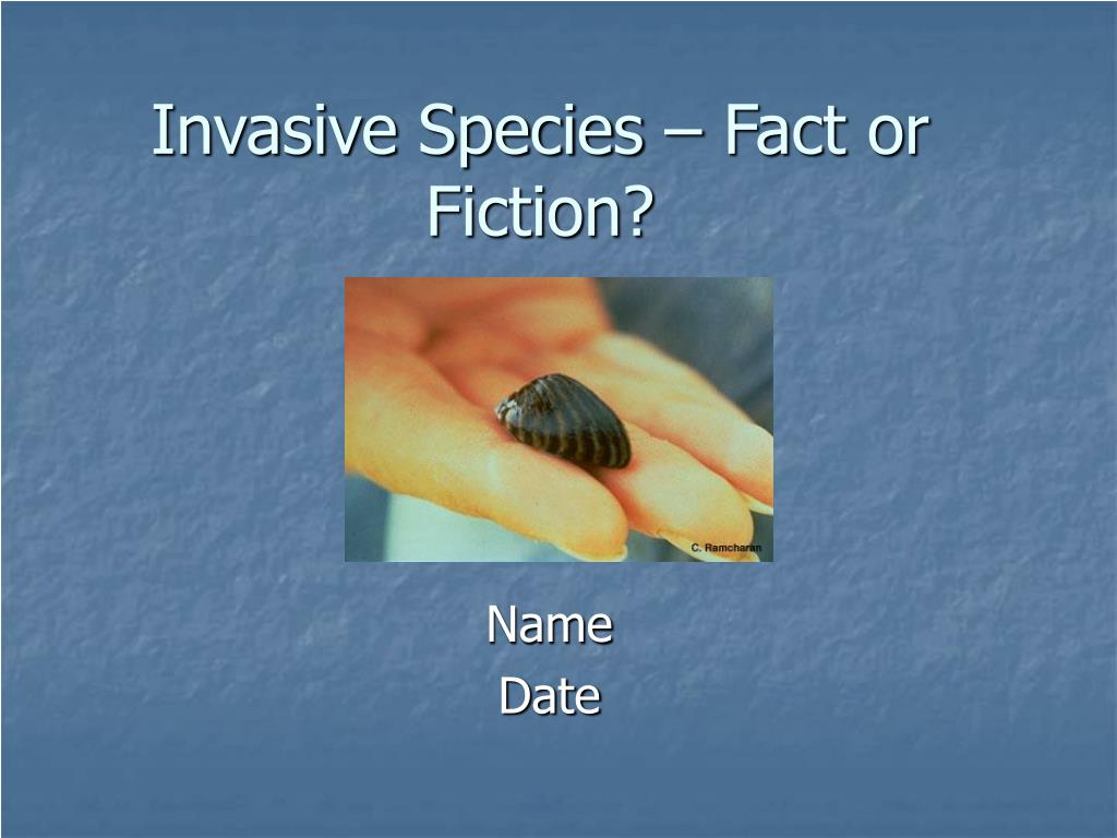 Invasive Species – Fact or Fiction?