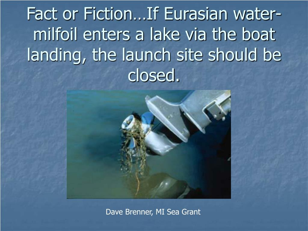 Fact or Fiction…If Eurasian water-milfoil enters a lake via the boat landing, the launch site should be closed.