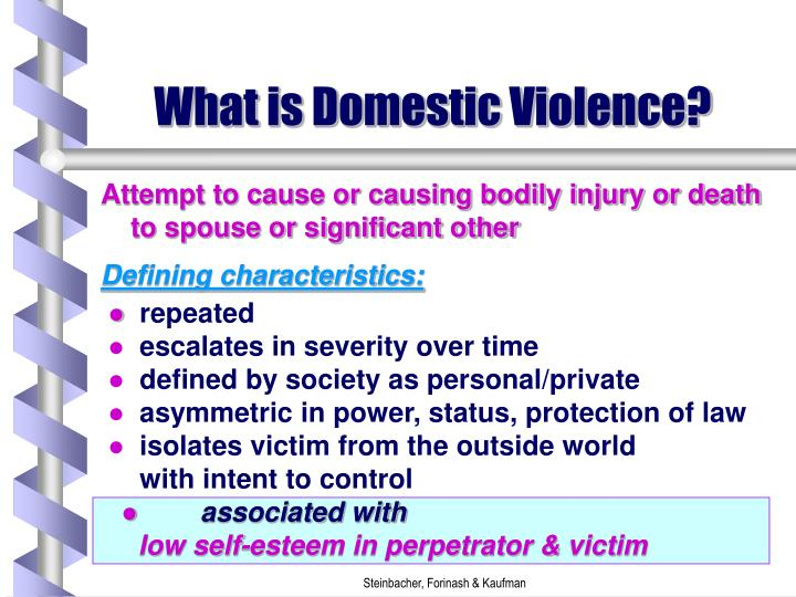 What is domestic violence