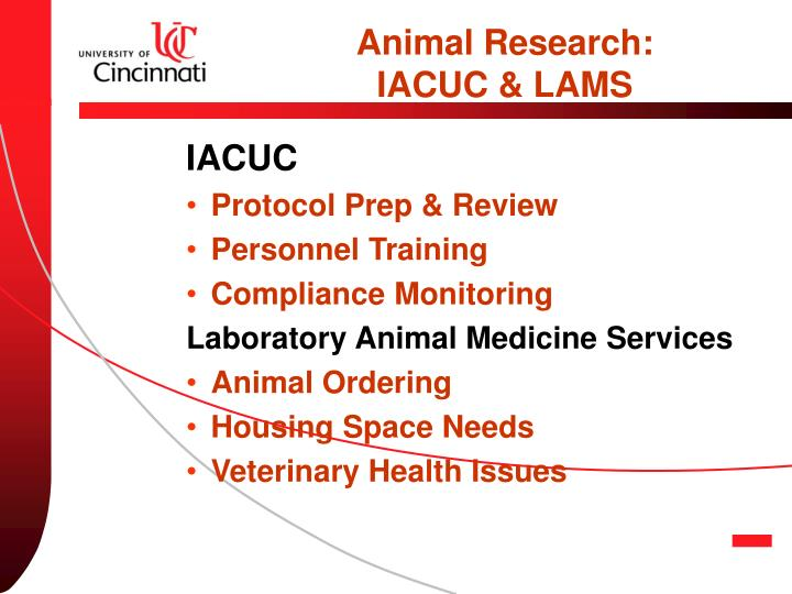 Animal Research: