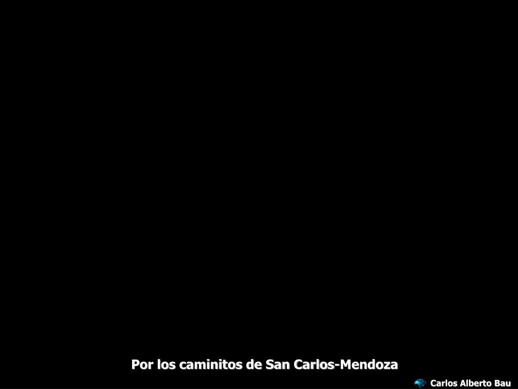Por los caminitos de San Carlos-Mendoza